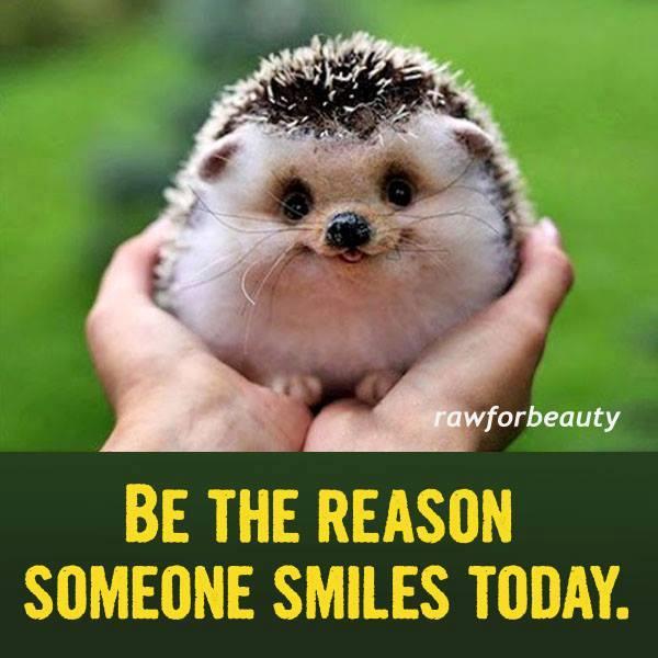 SMILE || MEME (epilepsy warning) - YouTube  |Cute Smile Memes